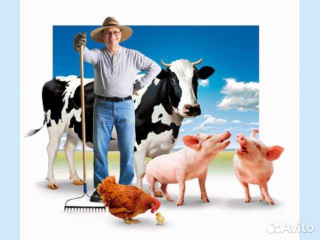 Информация о результатах конкурсных отборов начинающих фермеров и семейных