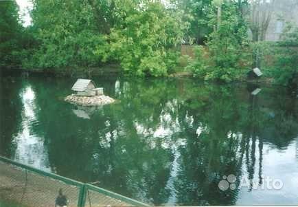 Бактерии для пруда и водоема