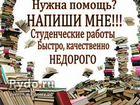 дипломные работы Услуги в России поиск специалистов на avito Контрольные курсовые и дипломные работы