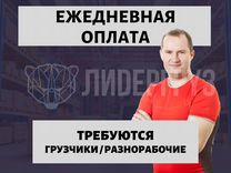 Работа для девушек с ежедневной оплатой в новосибирске для веб камера девушка модель genius