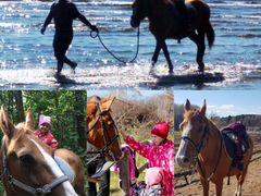 Конные прогулки и занятия верховой ездой