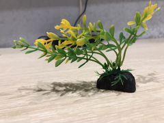 Травка для аквариума