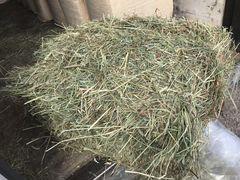Сено лугового разнотравье в кипах 18 кг