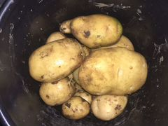 Картошка новый урожай