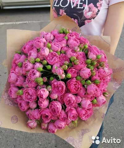 Розы пионовидные купить спб
