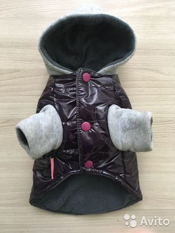 Jacket for small breeds 89158582211 buy 2